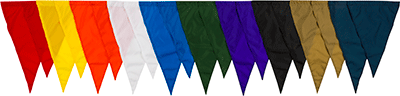 Competitor Nylon Backstroke Flags
