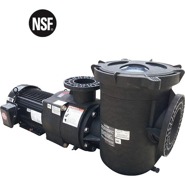 Pentair EQ Series Commercial TEFC Pool Pump – 15 HP-Three Phase